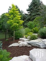 Landscaping Services   Landscaping & Gardening Services for sale in Nairobi, Kitisuru