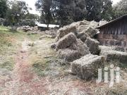 Rhodes Hay For Sale | Feeds, Supplements & Seeds for sale in Nyeri, Mweiga