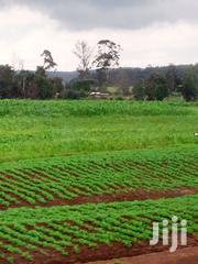 Land Very Prime At Kahoya Very Prime 9 Acres. | Land & Plots For Sale for sale in Uasin Gishu, Langas