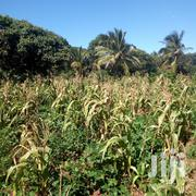 Land for Sale at Kikambala Near Sultan Palece | Land & Plots For Sale for sale in Mombasa, Majengo