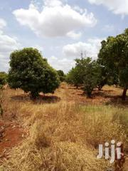 733 Acres River Frontage In Kibwezi Town | Land & Plots For Sale for sale in Makueni, Kikumbulyu North