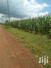 Land 3 Acres In Nigeria 5 Kilometers From Main Highway 1.2 Per Acre | Land & Plots For Sale for sale in Uasin Gishu, Ngeria