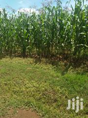 Land 15 Acres In Soy Five Kilometers From Main Highway | Land & Plots For Sale for sale in Uasin Gishu, Soy
