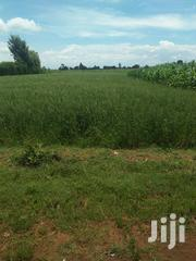 Land 5 Acres In Soy 800k Per Acre With Ready Title Deed | Land & Plots For Sale for sale in Uasin Gishu, Soy