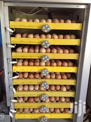 Egg Incubator | Farm Machinery & Equipment for sale in Kisumu, Central Kisumu