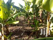 330 Acres Located in Kibwezi River Frontage | Land & Plots For Sale for sale in Makueni, Kikumbulyu South