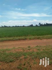 Land 4 Acres In Soy Per Acre With Ready Title Deed | Land & Plots For Sale for sale in Uasin Gishu, Kapkures (Soy)