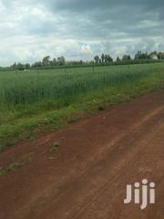 Land 20acre In Moiben With Ready Title Deed | Land & Plots For Sale for sale in Uasin Gishu, Moiben