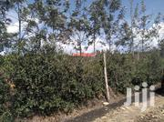 Tittle Deed Ready Owner (Freehold) | Land & Plots For Sale for sale in Kajiado, Ngong