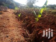 Plot Size 50/100 | Land & Plots For Sale for sale in Machakos, Kathiani Central