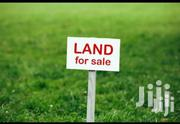 Land Available for Sell   Land & Plots For Sale for sale in Nakuru, Elburgon