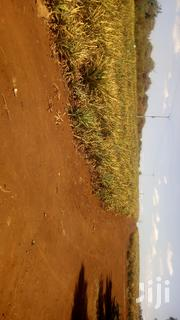 30 Acres of Land on Sale at Kantafu 3.5 Kms From Tarmac. | Land & Plots For Sale for sale in Machakos, Matungulu East