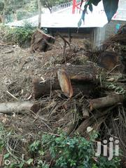 Dry Firewood For Sale In Bulk | Garden for sale in Kajiado, Ngong