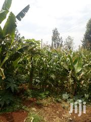 Selling a Half Acre of Land | Land & Plots For Sale for sale in Kiambu, Ting'Ang'A