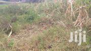 Eigth Plot Near Replaced_link Road. | Land & Plots For Sale for sale in Kirinyaga, Kangai