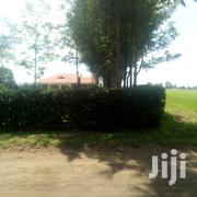 5 Acres for Sale in Ngata | Land & Plots For Sale for sale in Nakuru, Njoro