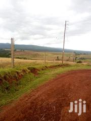 1350 Acres of Land Located in Timau Nanyuki | Land & Plots For Sale for sale in Laikipia, Nanyuki