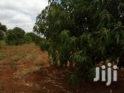 54 Acres River Frontage For Lease | Land & Plots for Rent for sale in Makueni, Makindu