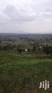Kinungi Off Nakuru Nairobi Highway | Land & Plots For Sale for sale in Nakuru, Naivasha East