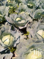 Ready Cabbages   Meals & Drinks for sale in Laikipia, Tigithi