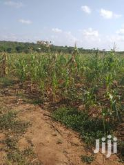 Land for Sale in Malindi | Land & Plots For Sale for sale in Kilifi, Malindi Town