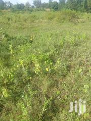 4.3 Acres Murang'a: Mbombo | Land & Plots For Sale for sale in Murang'a, Township G