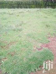 50*100 Plots | Land & Plots For Sale for sale in Laikipia, Igwamiti