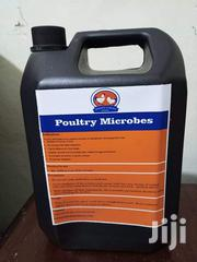 Poultry Microbes | Farm Machinery & Equipment for sale in Nairobi, Kitisuru