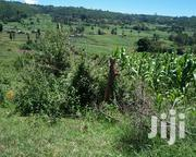 24 Acres Muhotetu | Land & Plots For Sale for sale in Laikipia, Marmanet