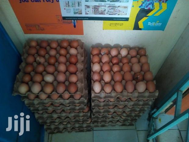 Archive: Selling Large Eggs On Wholesale