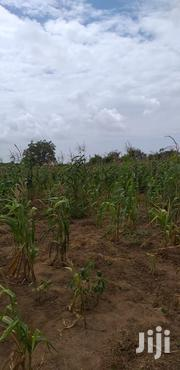 Malindi Land Offer | Land & Plots For Sale for sale in Mombasa, Magogoni