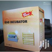 Egg Incubator For Sale | Livestock & Poultry for sale in Kiambu, Juja