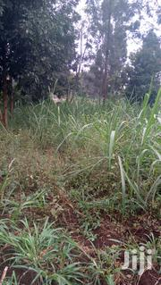 Kiambu Ruaka Near Cytonn Project Quarter Acre Commercial Plot | Land & Plots For Sale for sale in Kiambu, Muchatha