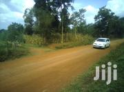 1 Acre Land In Busia | Land & Plots For Sale for sale in Busia, Bukhayo Central