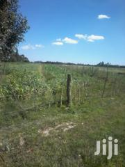 1.5 Acres for Sale in Memo Nyandarua County. | Land & Plots For Sale for sale in Nakuru, Biashara (Naivasha)