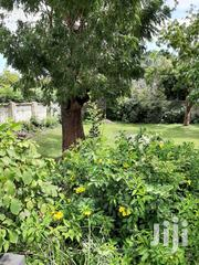 Property for Sale | Commercial Property For Sale for sale in Mombasa, Bamburi