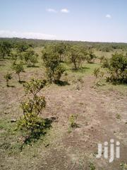 12 Acres Land for Sale at Ngobit | Land & Plots For Sale for sale in Laikipia, Ngobit