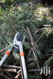 Tree Trimming Service | Other Services for sale in Nairobi, Kitisuru