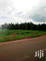 Land Soy 40 Acres Very Prime Land Western Side | Land & Plots For Sale for sale in Uasin Gishu, Langas