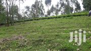 1 Acre Prime Land on Sale in Duka Moja Kericho | Land & Plots For Sale for sale in Kericho, Kipchebor