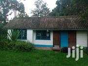 1 Bedroom House Tigoni To Let | Houses & Apartments For Rent for sale in Kiambu, Limuru East