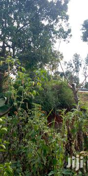 Agricultural Land for Sale | Land & Plots For Sale for sale in Tharaka-Nithi, Magumoni