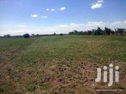 200 Acres Of Land Ololunga Narok | Land & Plots for Rent for sale in Nakuru, Mau Narok