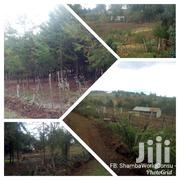 6 Acres Nyandarua: Bundori :Gichaka | Land & Plots For Sale for sale in Nyandarua, Mirangine