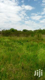 3 Acres Forested Land. | Land & Plots For Sale for sale in Uasin Gishu, Kiplombe