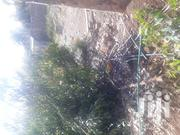 Plot for Sale in Ngong Town | Land & Plots For Sale for sale in Kajiado, Oloolua