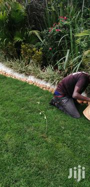 Landscaping And Lawn Services | Gardening & Landscaping CVs for sale in Nairobi, Karen