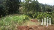 1/4 Plot for Sale | Land & Plots For Sale for sale in Nyeri, Rware