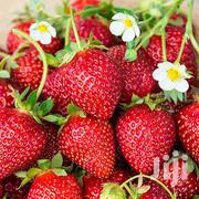 Strawberries Fruits | Meals & Drinks for sale in Nairobi, Parklands/Highridge