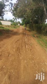 Permanent House For Sale | Houses & Apartments For Sale for sale in Siaya, North Sakwa (Bondo)
